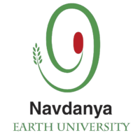 NEU Logo 2